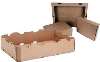 processed food packaging cartons